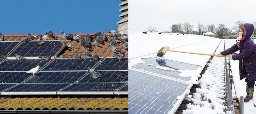 prijs zonnepanelen reinigen